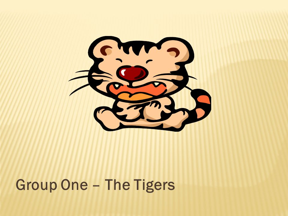 Group One – The Tigers