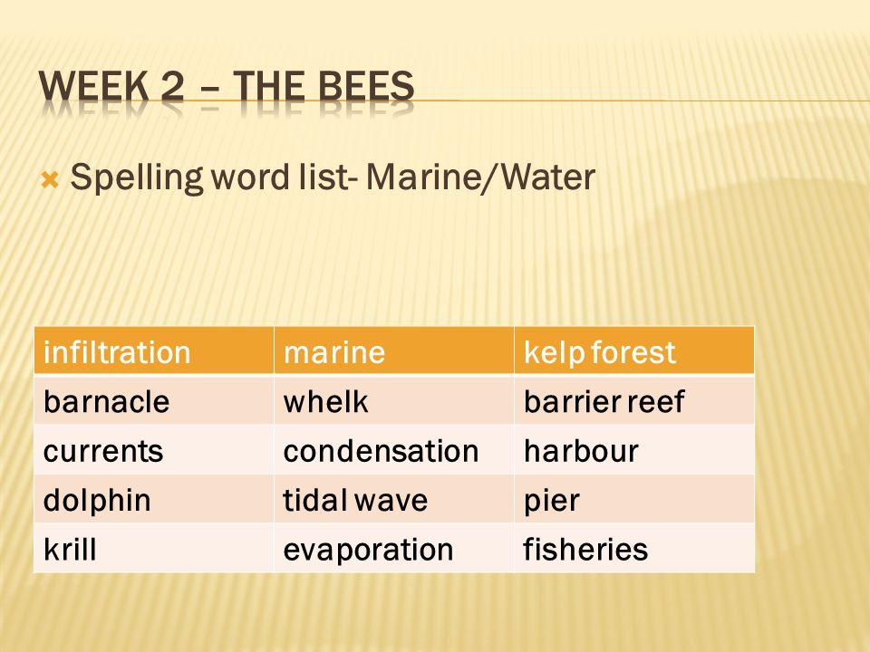 Week 2 – The Bees Spelling word list- Marine/Water infiltration marine