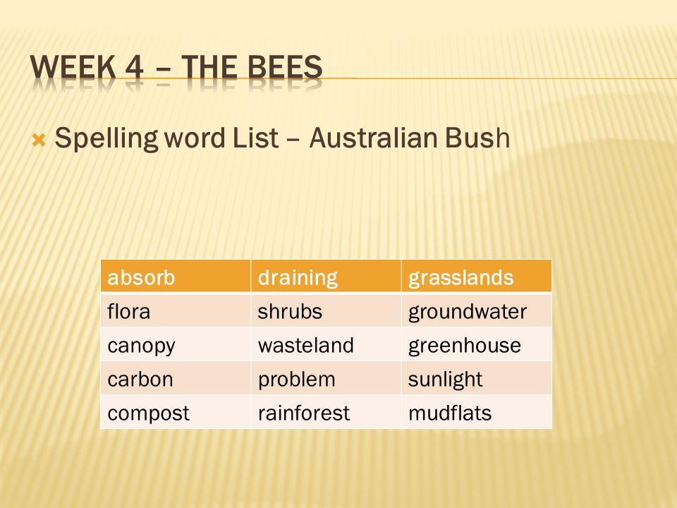 Week 4 – The bees Spelling word List – Australian Bush absorb draining