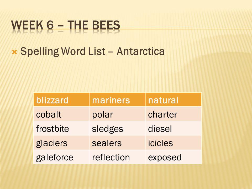 Week 6 – The bees Spelling Word List – Antarctica blizzard mariners
