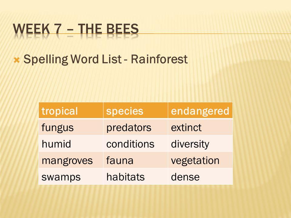 Week 7 – the bees Spelling Word List - Rainforest tropical species