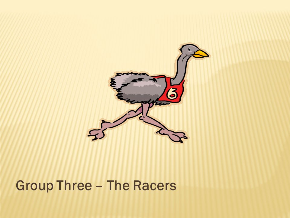 Group Three – The Racers