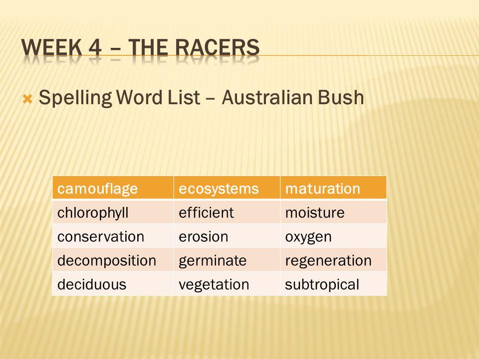 Week 4 – The Racers Spelling Word List – Australian Bush camouflage