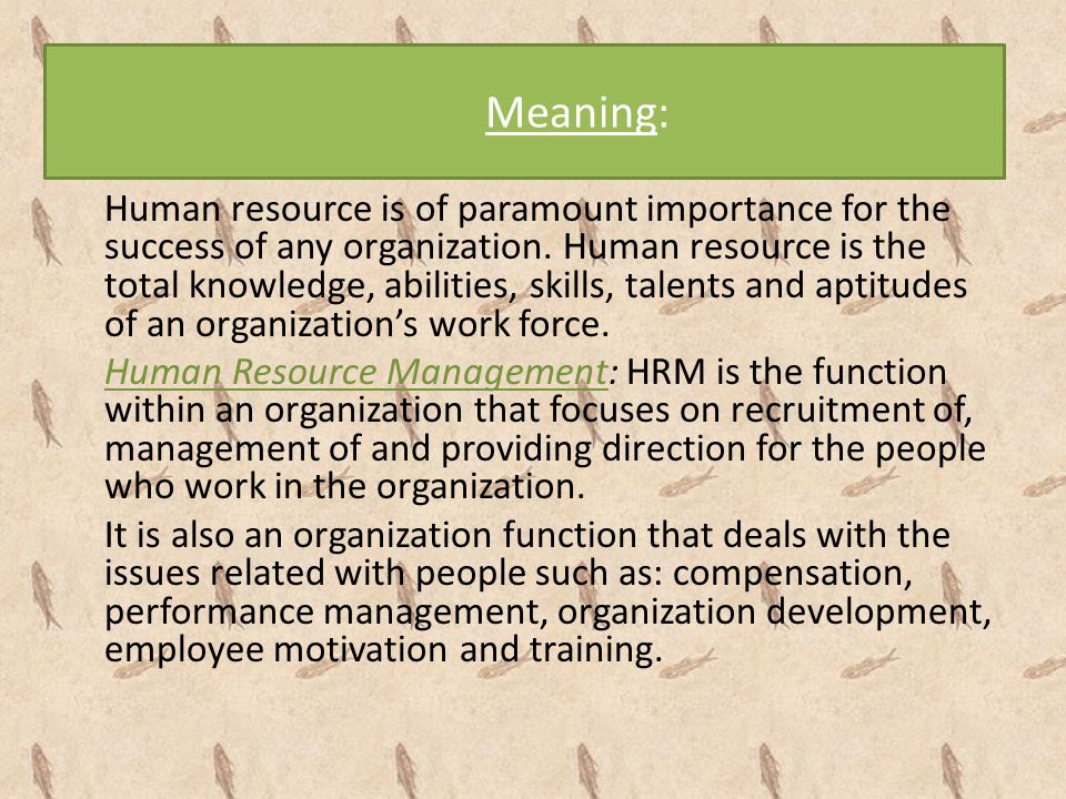 employees are not resources essay Task 1 human resources memo essay examples  i would recommend that the company motion for a summary judgment because the former employee did not make any efforts .