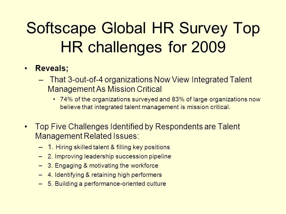 Softscape Global HR Survey Top HR challenges for 2009