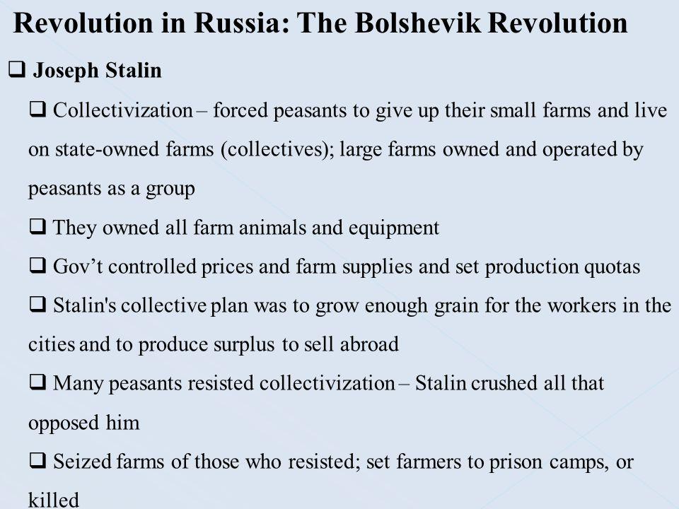 Revolution in Russia: The Bolshevik Revolution