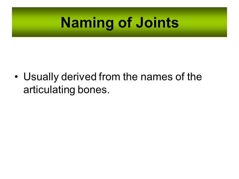 Naming of Joints Usually derived from the names of the articulating bones.
