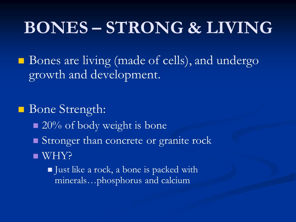 BONES – STRONG & LIVING Bones are living (made of cells), and undergo growth and development. Bone Strength: