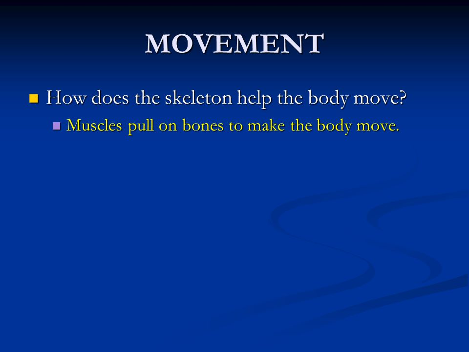 MOVEMENT How does the skeleton help the body move