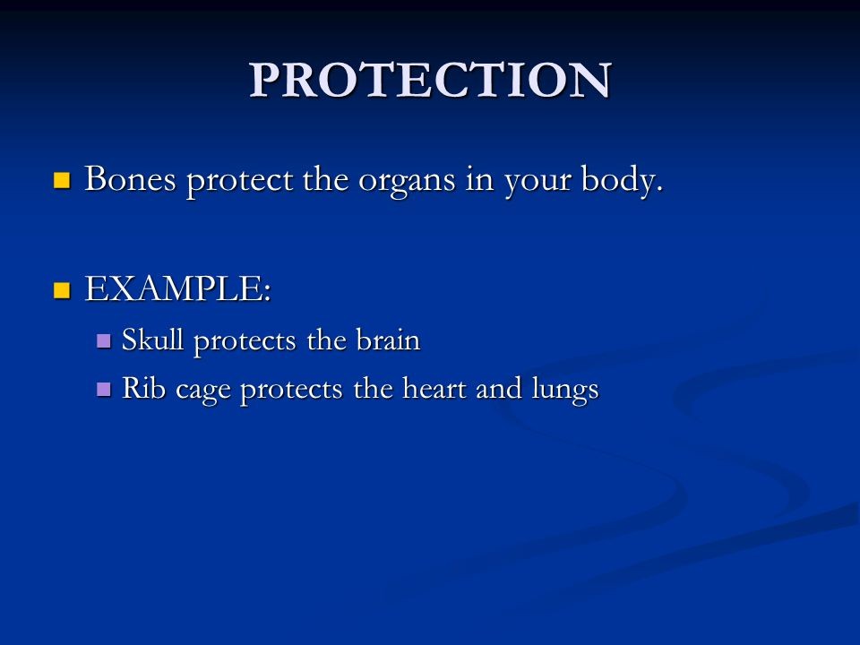 PROTECTION Bones protect the organs in your body. EXAMPLE:
