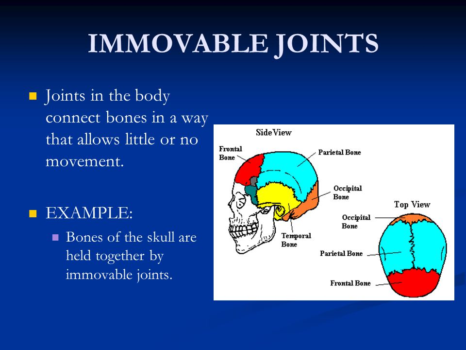 IMMOVABLE JOINTS Joints in the body connect bones in a way that allows little or no movement. EXAMPLE: