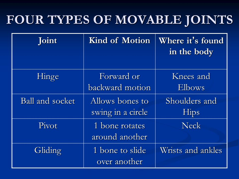 FOUR TYPES OF MOVABLE JOINTS