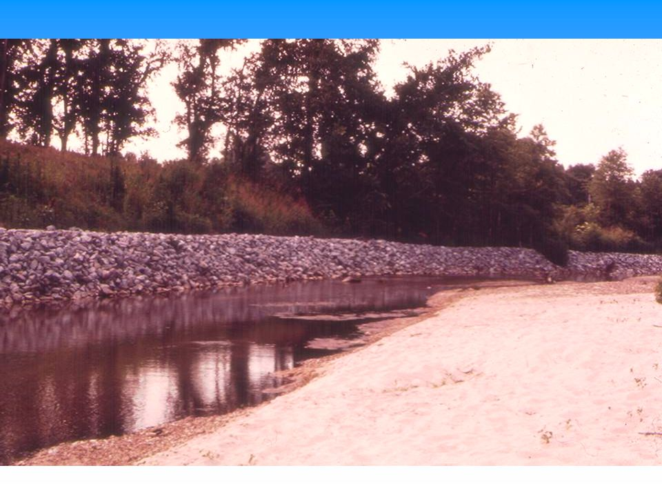 Another example of lower bank protection, also in Northern Mississippi as in previous slide.