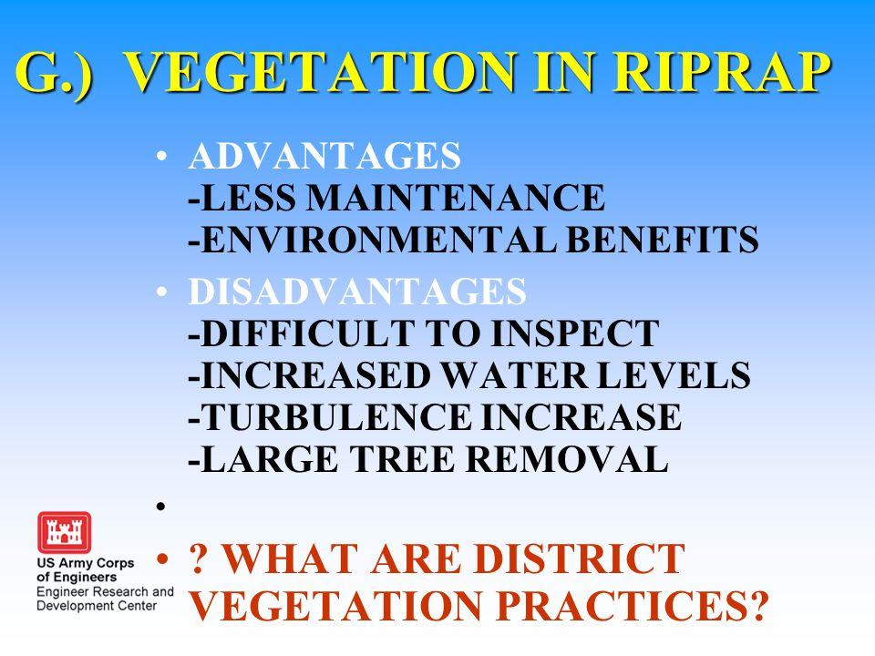 G.) VEGETATION IN RIPRAP