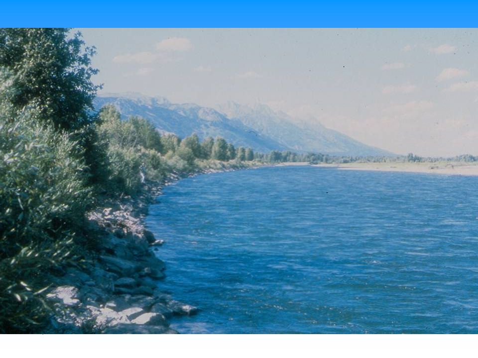 Shot of Snake River riprap with vegetation showing difficulty of inspection.