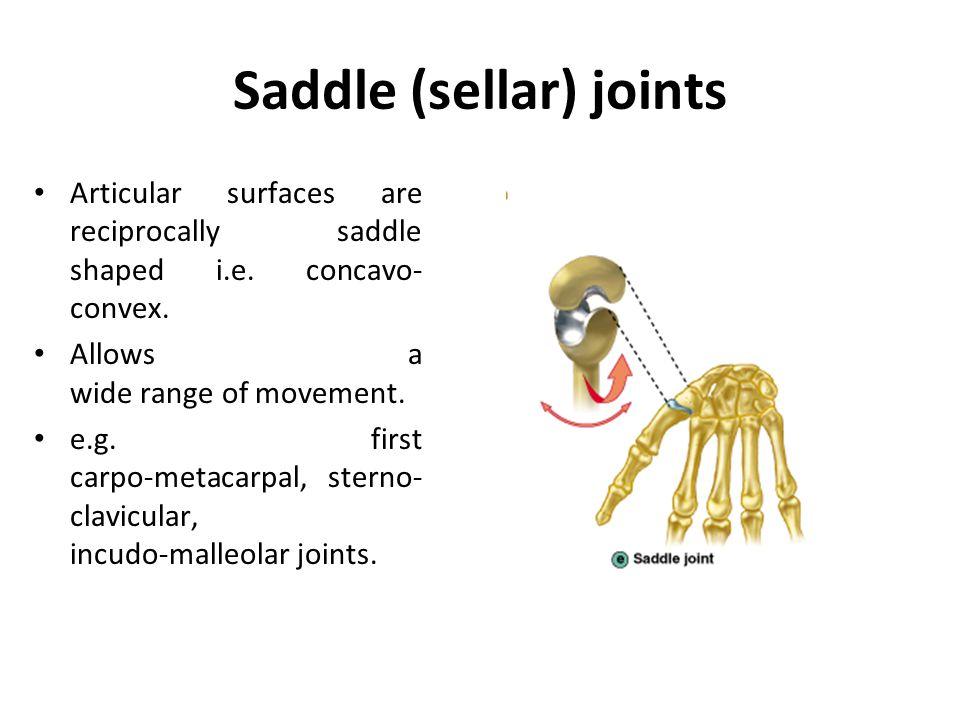 Saddle (sellar) joints
