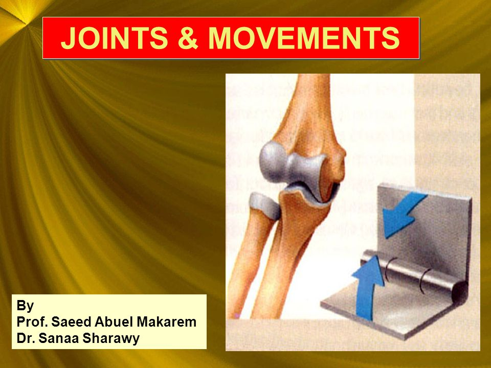 JOINTS & MOVEMENTS By Prof. Saeed Abuel Makarem Dr. Sanaa Sharawy