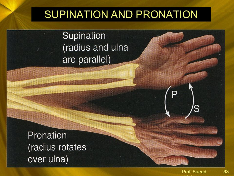SUPINATION AND PRONATION