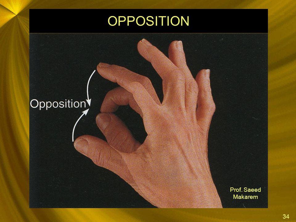 OPPOSITION Prof. Saeed Makarem