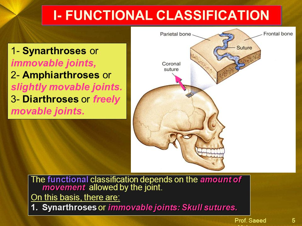 I- FUNCTIONAL CLASSIFICATION
