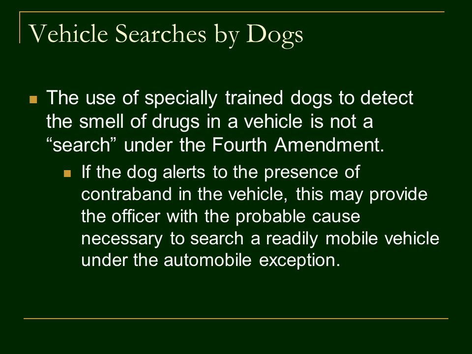 Vehicle Searches by Dogs