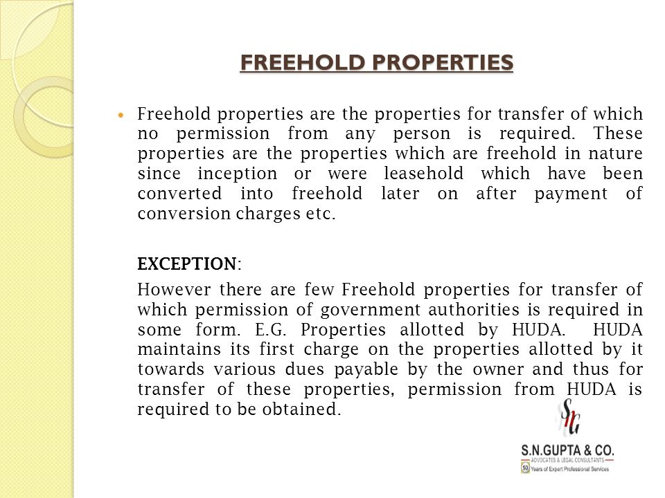 FREEHOLD PROPERTIES