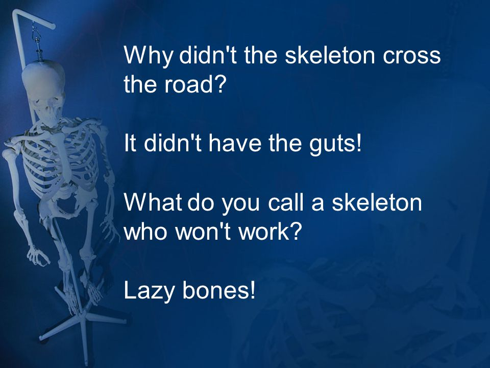 Why didn t the skeleton cross the road