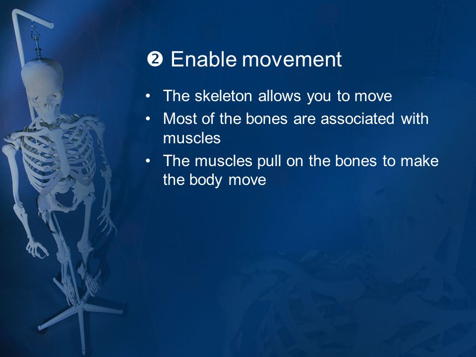  Enable movement The skeleton allows you to move