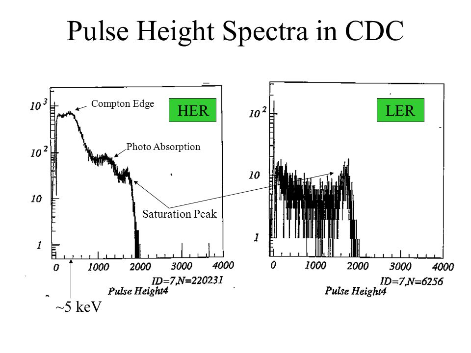 Pulse Height Spectra in CDC