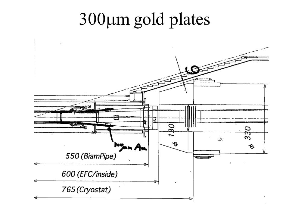300mm gold plates