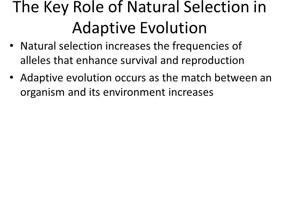 The Key Role of Natural Selection in Adaptive Evolution