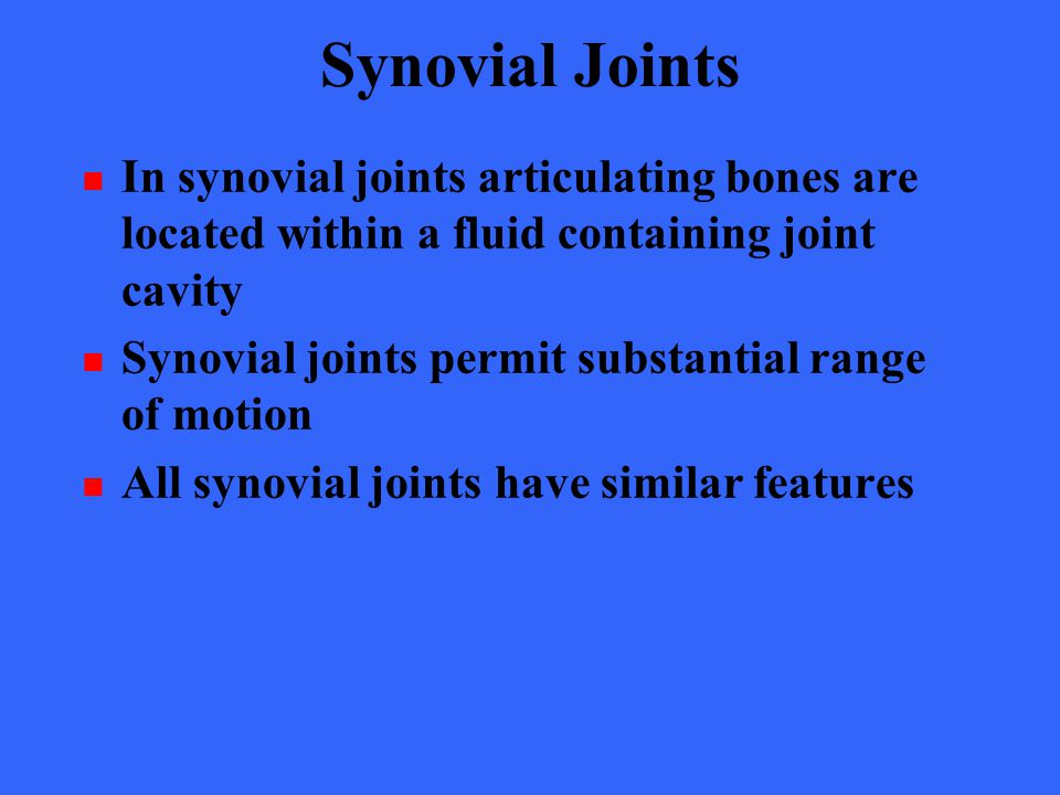 Synovial Joints In synovial joints articulating bones are located within a fluid containing joint cavity.