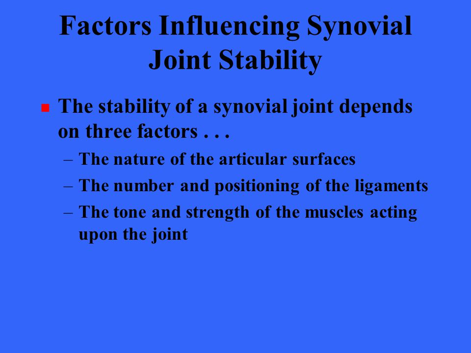 Factors Influencing Synovial Joint Stability