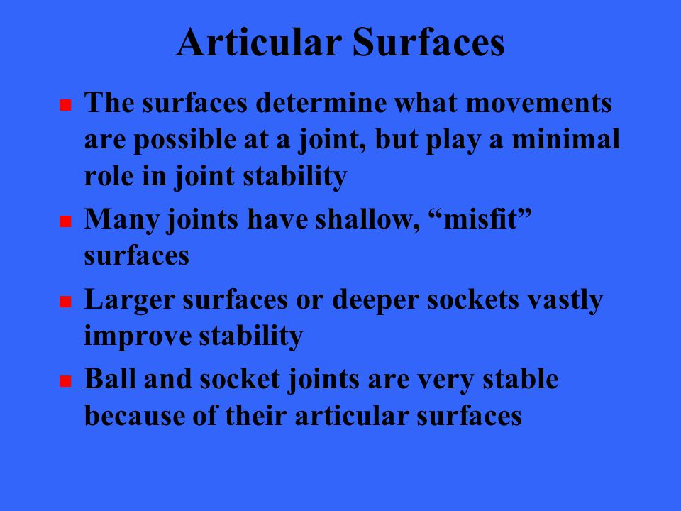 Articular Surfaces The surfaces determine what movements are possible at a joint, but play a minimal role in joint stability.