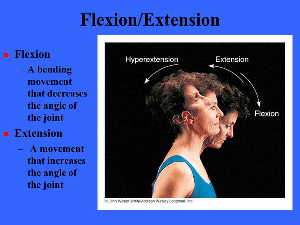 Flexion/Extension Flexion Extension