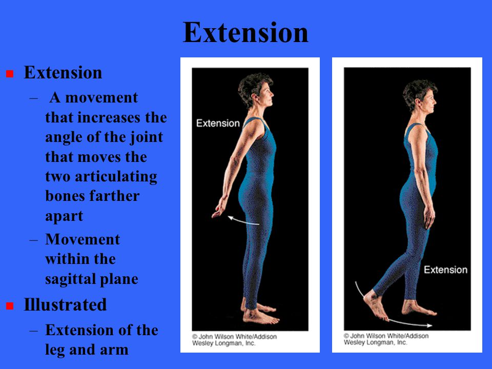 Extension Extension Illustrated