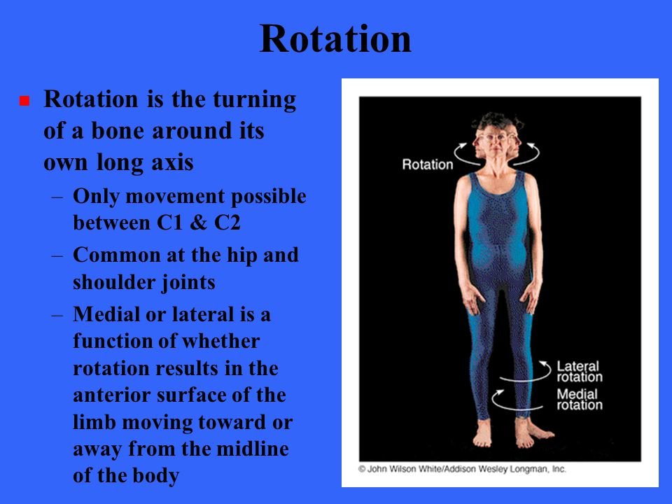 Rotation Rotation is the turning of a bone around its own long axis