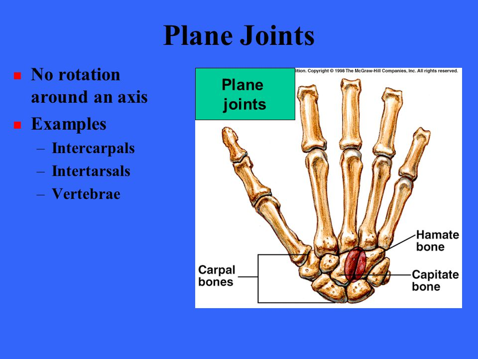 Plane Joints No rotation around an axis Examples Plane joints