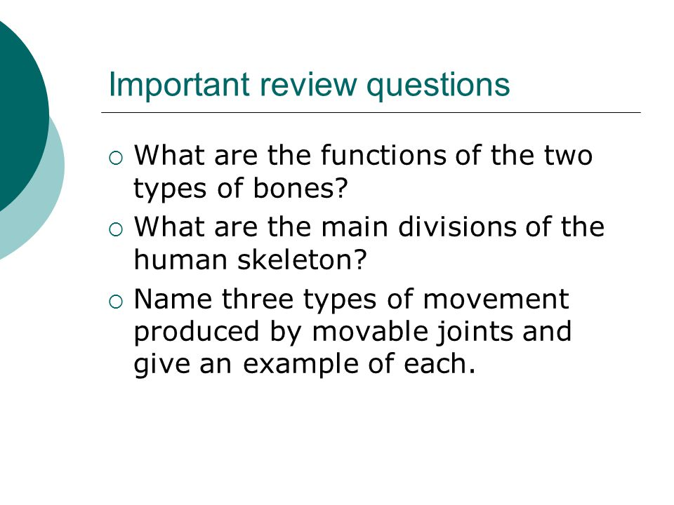 Important review questions