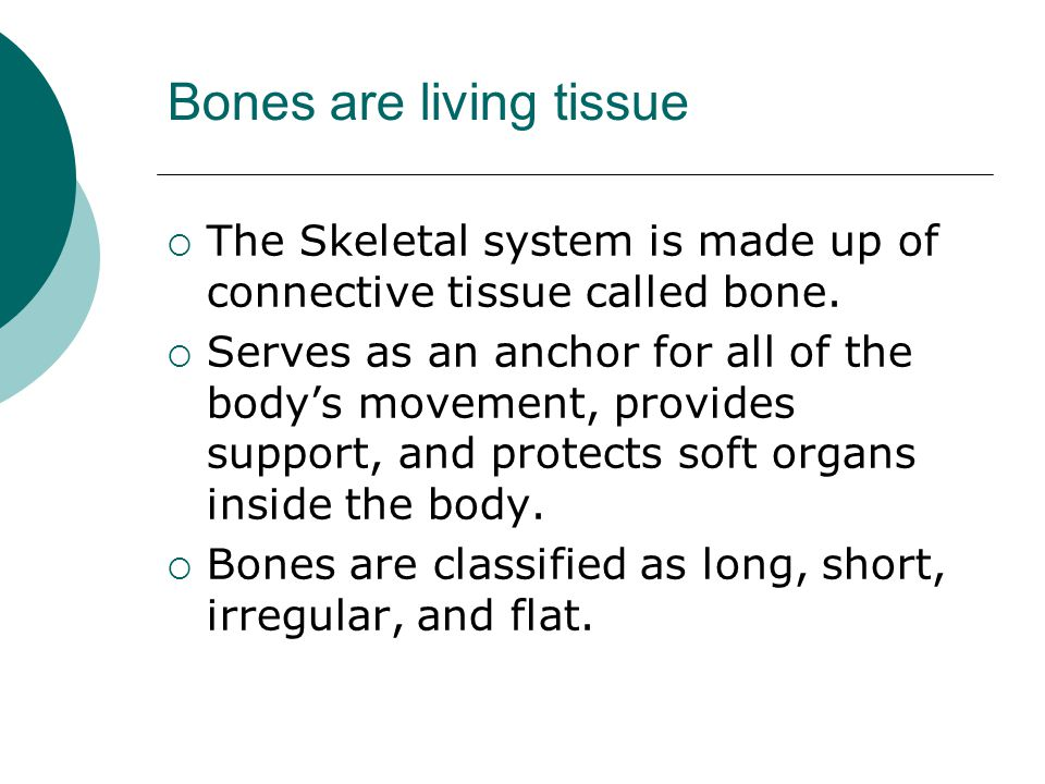 Bones are living tissue