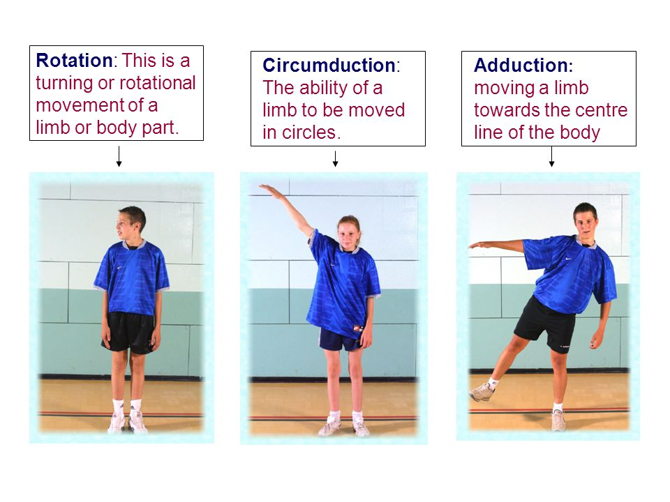 Rotation: This is a turning or rotational movement of a limb or body part.