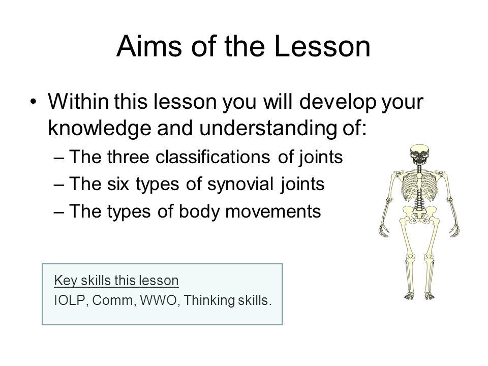 Aims of the Lesson Within this lesson you will develop your knowledge and understanding of: The three classifications of joints.