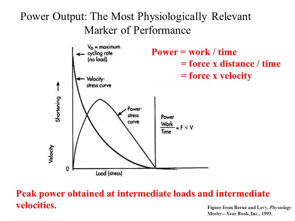 Power Output: The Most Physiologically Relevant