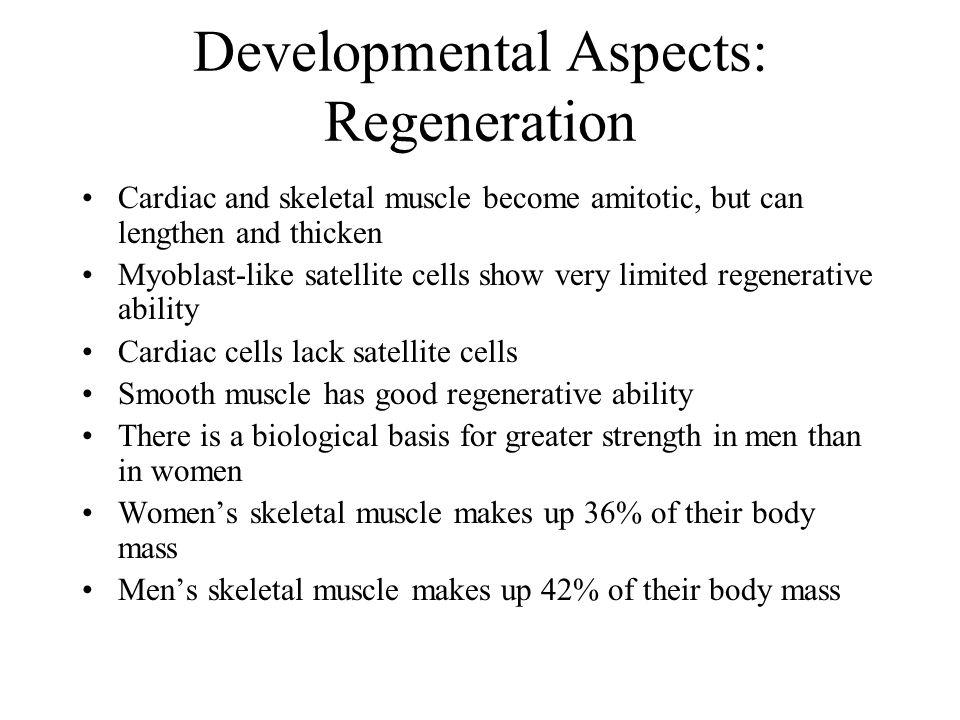 Developmental Aspects: Regeneration
