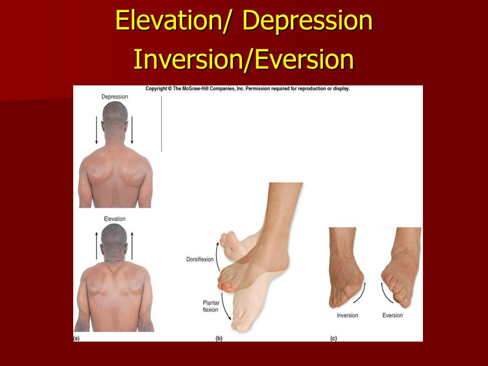 Elevation/ Depression