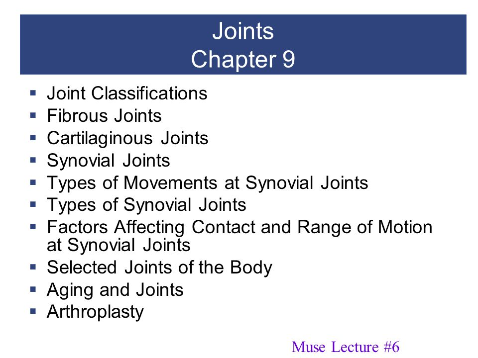 Joints Chapter 9 Joint Classifications Fibrous Joints