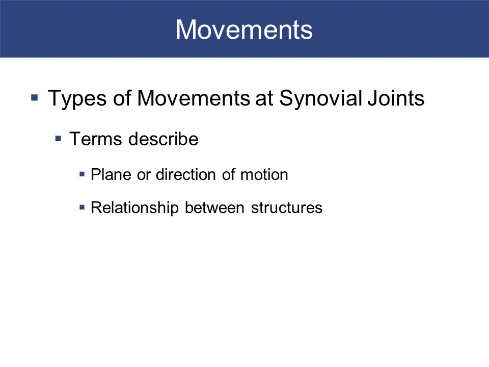 Movements Types of Movements at Synovial Joints Terms describe
