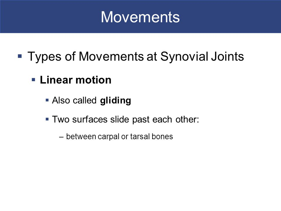 Movements Types of Movements at Synovial Joints Linear motion