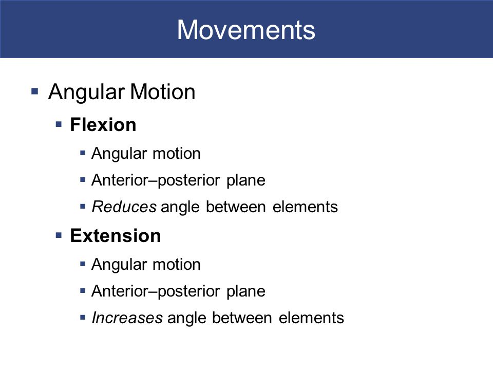 Movements Angular Motion Flexion Extension Angular motion