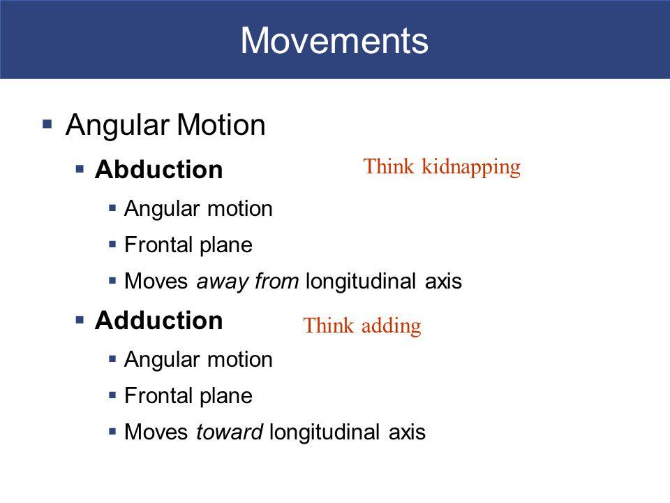 Movements Angular Motion Abduction Adduction Angular motion